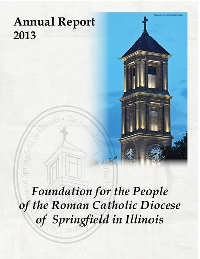 Foundation Annual Report 2013
